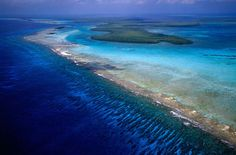 barrier reef - a coral reef separated from the mainland by a lagoon.