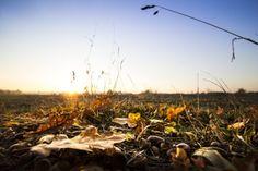 New free stock photo of light dawn landscape