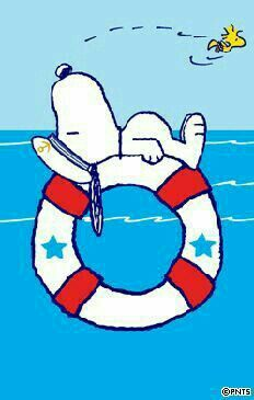 Snoopy Floating on a Life Preserver With Woodstock Flying Overhead Snoopy Love, Snoopy Und Woodstock, Peanuts Cartoon, Peanuts Snoopy, Peanuts Comics, Snoopy Pictures, Snoopy Wallpaper, Snoopy Quotes, Charlie Brown And Snoopy