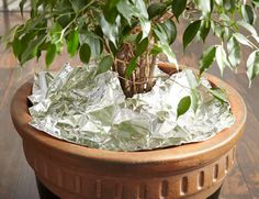 It takes many years for aluminum to break down in a landfill. So before you throw out used foil, consider our 10 unique ways to reuse it.