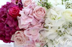 Click to close image, click und drag to move. Use ARROW keys for previous and next. Arrow Keys, Close Image, Wedding Decorations, Rose, Flowers, Plants, Pink, Florals, Roses