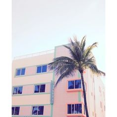 US@UO Summer in Miami ❤ liked on Polyvore featuring pictures, backgrounds, photo, filler and photography