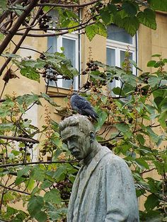 https://flic.kr/p/ujUQBW | Hungary 2008 - Pigeon and statue | Pictures by Björn Roose. Magyarország/Hungary, 2008.