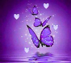 New Bird Aesthetic Purple 22 Ideas Butterfly Background, Butterfly Wallpaper, Purple Butterfly, Butterfly Flowers, Beautiful Butterflies, Spring Wallpaper, Purple Love, All Things Purple, Shades Of Purple