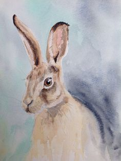 Hare in watercolours. My first attempt