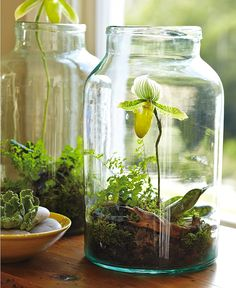 Use a Mason Jar and make your own small garden or fill it up with fake flowers