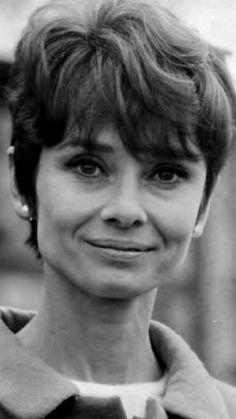 Audrey Hepburn- De In Love With Audrey Hepburn