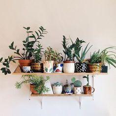 The kind of shelves we like.