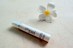 Echium & Argan Gentle Eye Cream by Pai