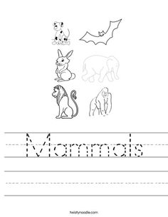 worksheet for identifying mammals circle words kids dolphins pinterest worksheets. Black Bedroom Furniture Sets. Home Design Ideas