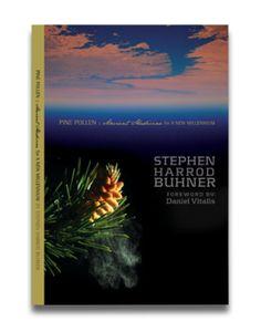 Pine Pollen: Ancient Medicine for a Modern World by Stephen Harrod Buhner