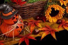 Google képkeresési találat: http://2.bp.blogspot.com/-QpQetwsEuac/UDY5-pZSSxI/AAAAAAAAKqg/rCjHwSCkOPk/s1600/halloween-autumn-theme-11287576365WuEn.jpg