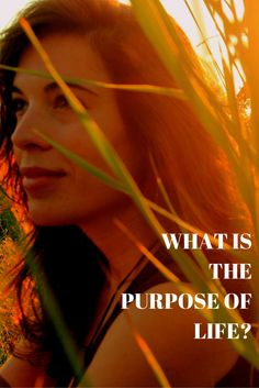 What is the purpose of life? #coaching #blog #purpose #dreamlife