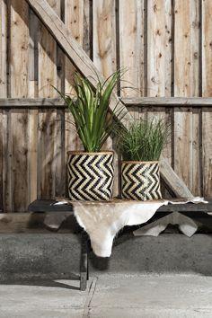 Bambuskurv mønster stor | Kremmerhuset #Kremmerhuset #Interior #Inspiration
