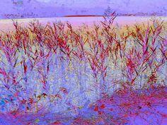 """'Stoffdesign """"am See 150""""' von Rudolf Büttner bei artflakes.com als Poster oder Kunstdruck $18.71"""
