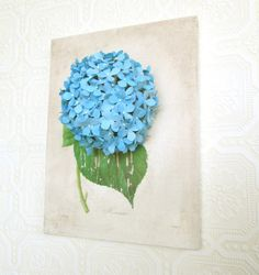 REDUCED 3D Blue Hydrangea Botanical Print on by HappinessInBloom
