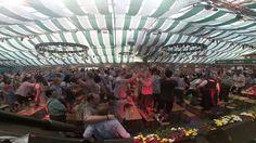 Die Babenberger am Wiener Wiesn-Fest 2016 Fair Grounds, Poster, Live, Travel, Tent, Musik, Pictures, Viajes, Destinations