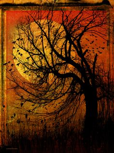 And if it's around October twentieth and everything smoky-smelling and the sky orange and ash gray at twilight, it seems Halloween will never come in a fall of broomsticks and a soft flap of bedsheets around corners.""
