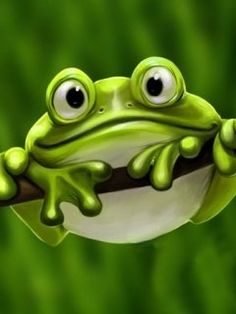 This lens was created in honor of one of my favorite animals, the frog! I love everything about frogs and I will love to share some interesting...