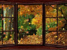 animated fall | ... -yellow-fall-animation-erotik-animated-nature-gifs-nice_large.gif