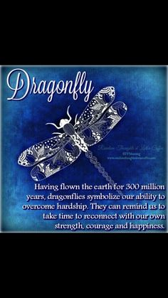A beautiful creature//didos sign-- wd appear to us after he passed,,, Dragonfly Symbolism, Dragonfly Meaning, Dragonfly Quotes, Dragonfly Tattoo Design, Dragonfly Art, Great Quotes, Me Quotes, Inspirational Quotes, Motivational