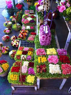 El Prado Market, Mexico