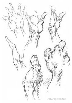 hand studies, george bridgman