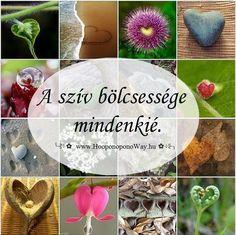 Hálát adok a mai napért. Mindannyian bölcsek vagyunk. A szív bölcsessége mindenkié. Egyetlen forrása van és mindenki számára elérhető. Tőlünk függ, hogy élünk-e vele. Hogy vele élünk-e. Hogy élünk-e... Így szeretlek, Élet!  ╰⊰⊹✿ Köszönöm ♡ Szeretlek εїз Ho'oponoponoway ✿⊹⊱╮ www.HooponoponoWay.hu