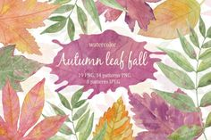 Autumn leaf fall. Watercolor. By Natali_art