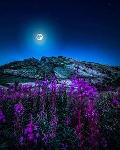 #moon #night #Lua-cheia