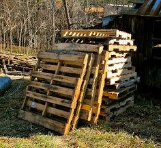 Goat barn built from pallets (yes, I still want goats!)