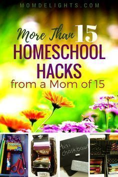 More than 15 Homeschool Hacks from a Mom of 15 - It doesn't take a genius to educate a large family at home, but it does take quite a bit of focus and ingenuity. Here are some homeschool hacks to help. Professor, Planning School, School Planner, Homeschool Curriculum, Homeschooling Resources, Learning Activities, Homeschooling Statistics, Homeschool Supplies, Kids Learning