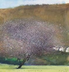 Hawker's apple tree (Kurt Jackson) Kurt Jackson, Landscape Artwork, Abstract Landscape, Tree Artwork, Art Photography, Photos, Illustration, Nature, Apple Tree