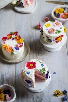 Mini Cakes with Edible Flowers. Taste the rainbow! Learn how to make mini ombré layer cakes brightened with edible flowers. Pretty Cakes, Cute Cakes, Beautiful Cakes, Amazing Cakes, Mini Wedding Cakes, Mini Cakes, Cupcake Cakes, Individual Wedding Cakes, Individual Cakes