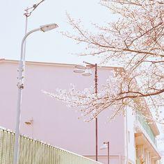 by shuji+