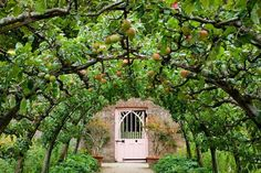 The kitchen garden at Highgrove, Prince Charles's home in Gloucestershire, features an archway of apple trees