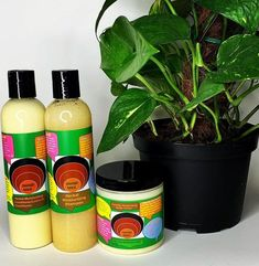 Use for breakage,hydrating,curl defining,softens hair,growth. With Buttercreme Beard c. New Hair Growth, Hair Growth Tips, Healthy Hair Growth, Grow Thicker Hair, How To Grow Your Hair Faster, Dry Brittle Hair, Hair Shedding, Moisturizing Shampoo, Hair Kit