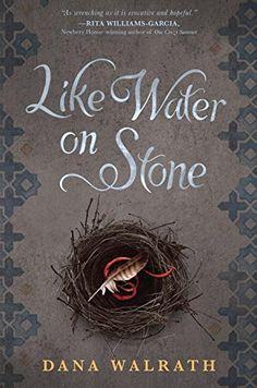Like Water on Stone by Dana Walrath http://smile.amazon.com/dp/0385743971/ref=cm_sw_r_pi_dp_QTrxvb1ZT6122