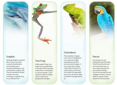printable exotic animals bookmarks