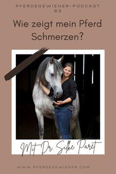 Pferde haben ja bekanntlich keine Schmerzenslaute. Dadurch kann es manchmal schwierig sein, zu erkennen, wann ein Pferd unter Schmerzen leidet. Gerade chronische Schmerzen sind oft nur an minimalen Veränderungen in der Mimik des Pferdes zu erkennen. Woran genau man Schmerzen beim Pferd erkennt erklärt Tierärztin Dr. Silke Paret in Episode 83 unseres Pferdepodcasts. #schmerzenbeimpferd #gesundespferd #krankespferd #pferdeverhalten #pferdegewieher #podcastpferd Huskies Puppies, Husky Puppy, Horses, Movie Posters, Animals, Horse Feed, Chronic Pain, Facial Expressions, Vet Office