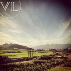 Enjoy the beautiful view of the Robertson Valley at Van Loveren. South Africa, Vineyard, Cape, Roses, Spaces, Outdoor, Beautiful, Food, Mantle