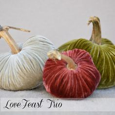 shop.lovefeasttable.com  $84  #pumpkins #fall #decor