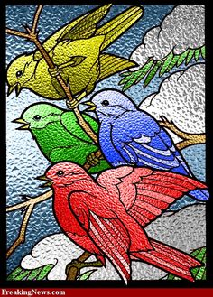 Free Bird Quilt Patterns - Bing Images