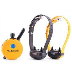 Educator 2 Dog 3/4 Mile Remote Trainer Dog Training Collar