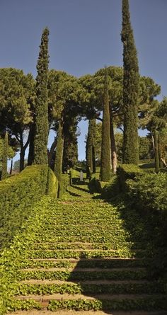 Situats en un paisatge de gran bellesa natural, sobre un penya-segat amb una impressionant vista al mar, es troben els jardins de Santa Clotilde, a Lloret de Mar  Catalonia