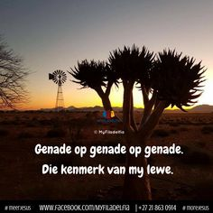 Die kenmerk van my lewe. Counselling Training, Christian Quotes Images, Nicholas Sparks Quotes, Afrikaanse Quotes, Living Water, Daughter Quotes, Bible Quotes, Qoutes, Good Morning Quotes