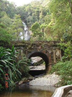 Floresta da Tijuca, Rio de Janeiro, Brazil    http://upload.wikimedia.org/wikipedia/commons/8/8a/Floresta_da_Tijuca.JPG