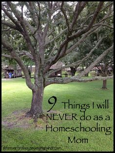 9 Things I will Never do as a Homeschooling Mom