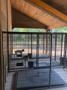 Outdoor kennels for fresh air and change of scenery. Dog Boarding Kennels, Dog Kennels, Shelter Dogs, Animal Shelter, Dog Kennel Designs, Kennel Ideas, Dog Kennel Inside, Horse Barn Plans, Horse Barns