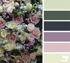 Flora Palette via Colour Pallette, Color Palate, Colour Schemes, Color Patterns, Color Combos, Design Seeds, Beautiful Color Combinations, Color Harmony, Colour Board